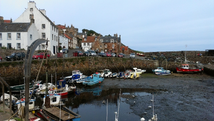 Crail - beautiful and fragrant2